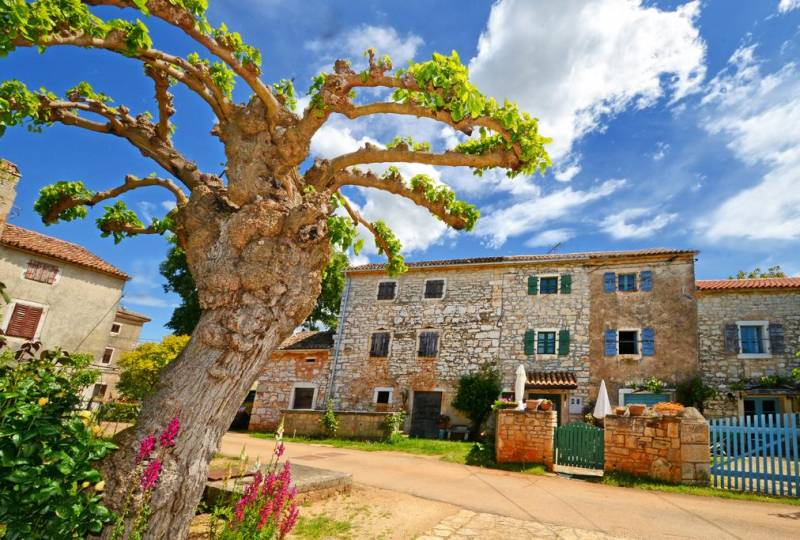 Holiday house Casa Malena